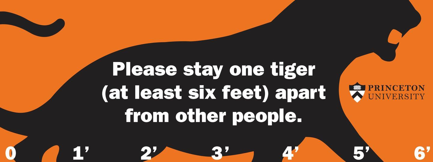 Social distancing sign urging people to stay a tiger's length apart